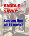 SaddleSavvyGraphic copy