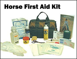 Horse First Aid Kit - TABcom LLC - Pets