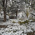 Snowstorm_Oct_25_2011_poudre_river_stables 156