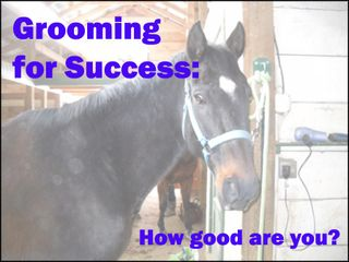 Click the photo to try our Grooming for Success quiz - MyHoofprints