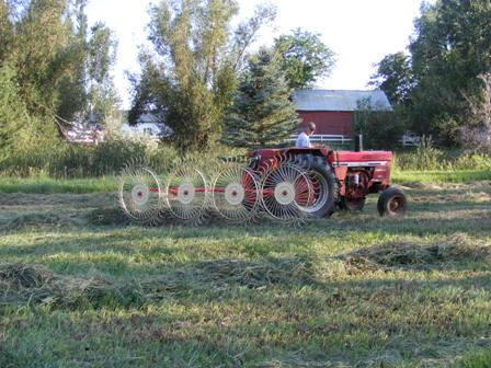 Dennis Vanatta puts our hay into windrows - Poudre River Stables - Fort Collins - Colorado - 80521