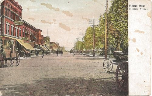 Historic horses - postcard - Billings - Montana Avenue - Montana - 1909