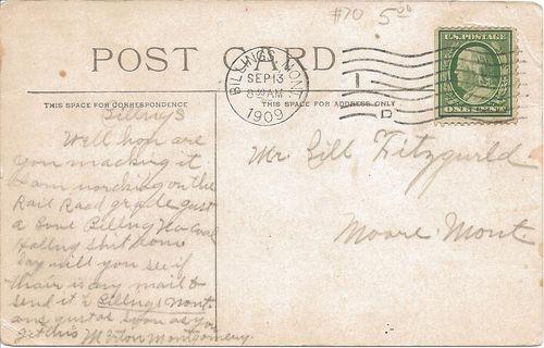 Historic horses - postcard message - 1909