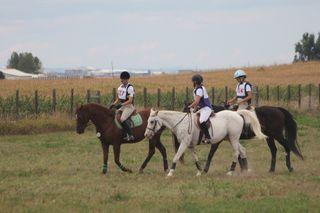 Show crew poudre river stables (800x533)
