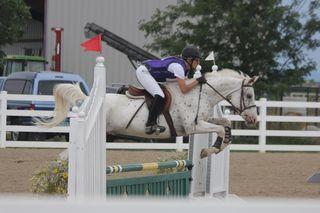Show crew charlie poudre river stables (800x533)
