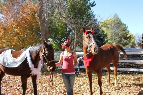 Angel devil in all of us - Halloween - Poudre River Stables - Fort Collins - Colorado - 80521