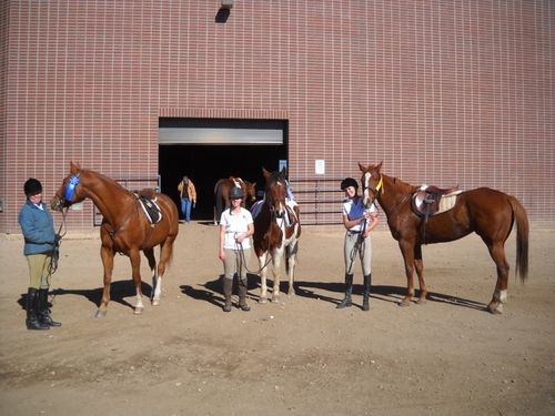 CSU fall schooling show - Hobbes, Cooper, Diva - horses from Poudre River Stables - Fort Collins - Colorado - 80521