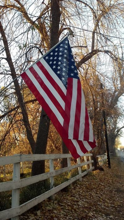 American flag - Veterans Day - 2013 - Poudre River Stables - Fort Collins - Colorado - 80521