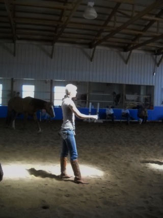 Jackie Johnson - Horse Trick Training Clinic Day 2 - Fort Collins - Colorado - 80521