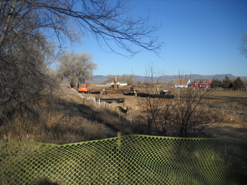 A deer jumps over the fence as the herd prepares to move - West Vine Outfall Project - Fort Collins - Colorado - 80521