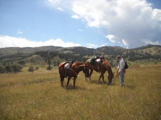 Bobcat Ridge Natural Area - Valley Loop Trail - Fort Collins - Colorado - 80521