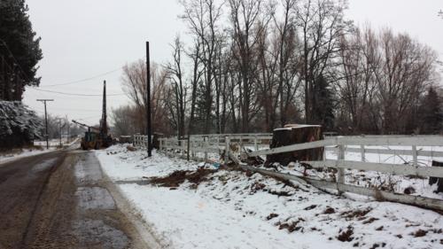 Deer - N. Shields St. - construction - Poudre River Stables - Fort Collins - Colorado - 80521