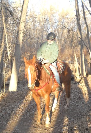 Hobbes, the Quarter Horse gelding purchased at Colorado State University's 2010 Legends of Ranching Sale, pauses on our suburban Poudre River trail.