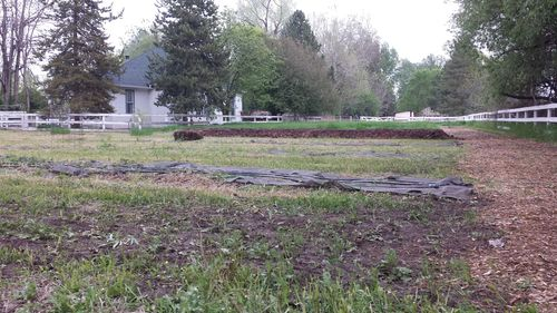 What to do with Mount Manure - Deep Bed