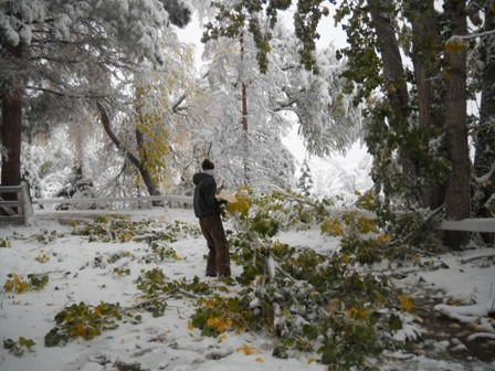 Snowstorm_Oct_25_2011_poudre_river_stables 155