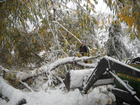 Snowstorm_Oct_25_2011_poudre_river_stables 158