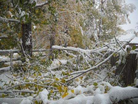 Snowstorm_Oct_25_2011_poudre_river_stables 160