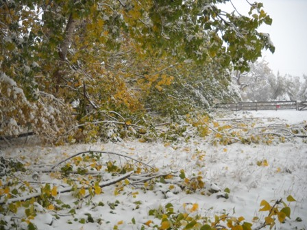 Snowstorm_Oct_25_2011_poudre_river_stables 169