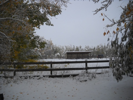 Snowstorm_Oct_25_2011_poudre_river_stables 181