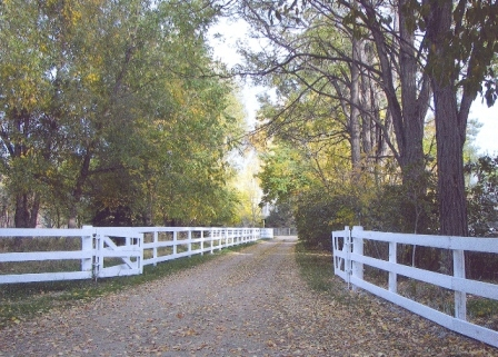 Driveway - Poudre River Stables - Fort Collins - Colorado - 80521